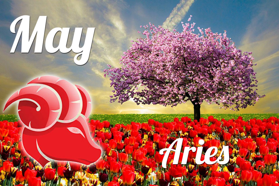 Aries horoscope May