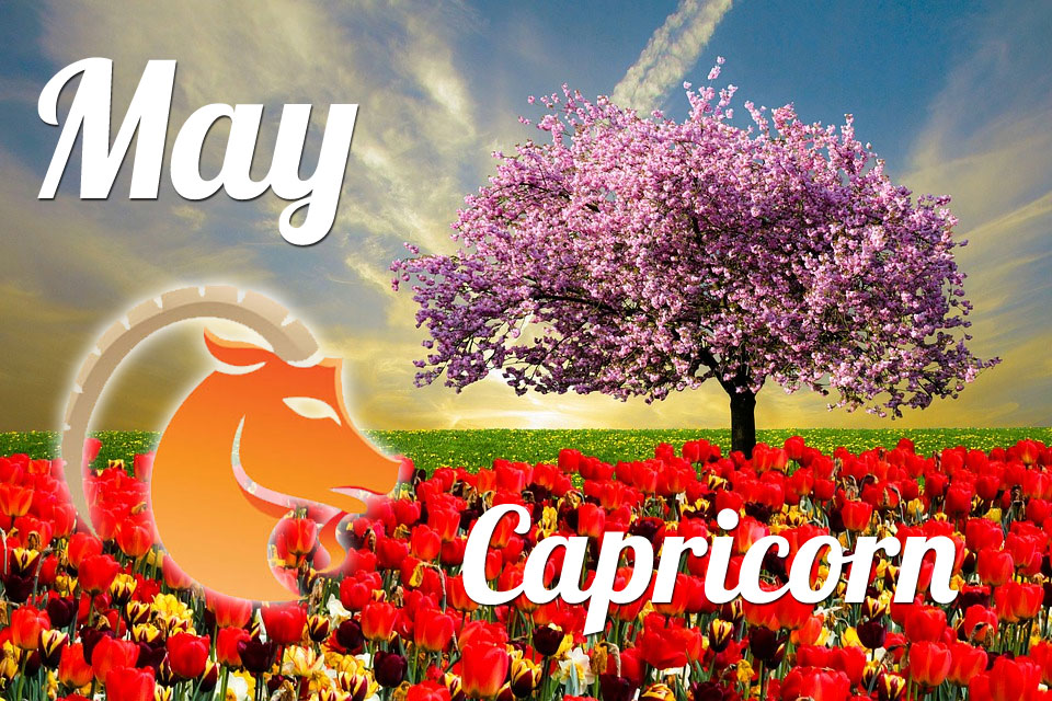 Capricorn horoscope May