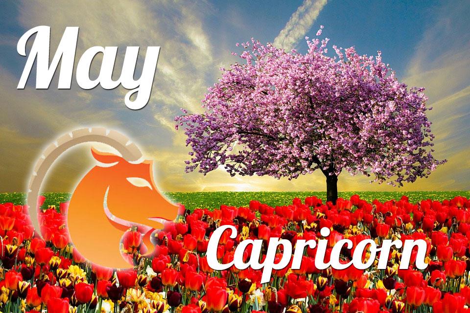 Capricorn May 2020