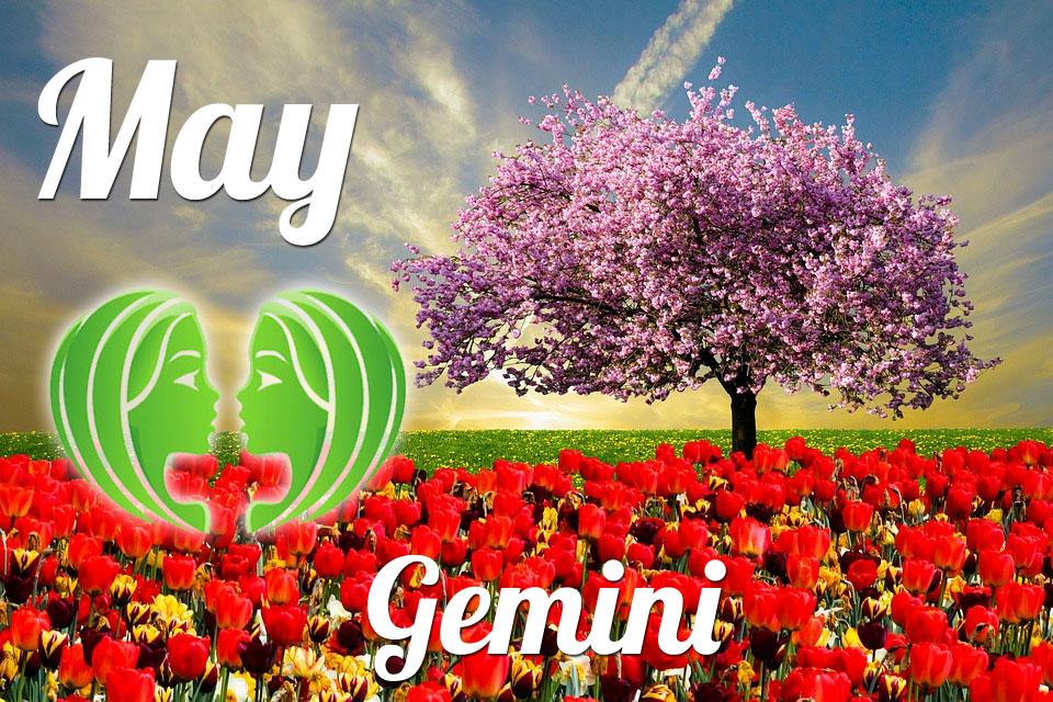 Gemini May 2019