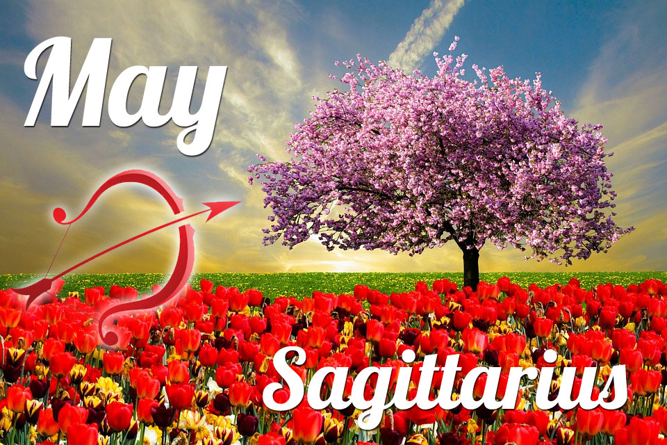 Sagittarius May 2019