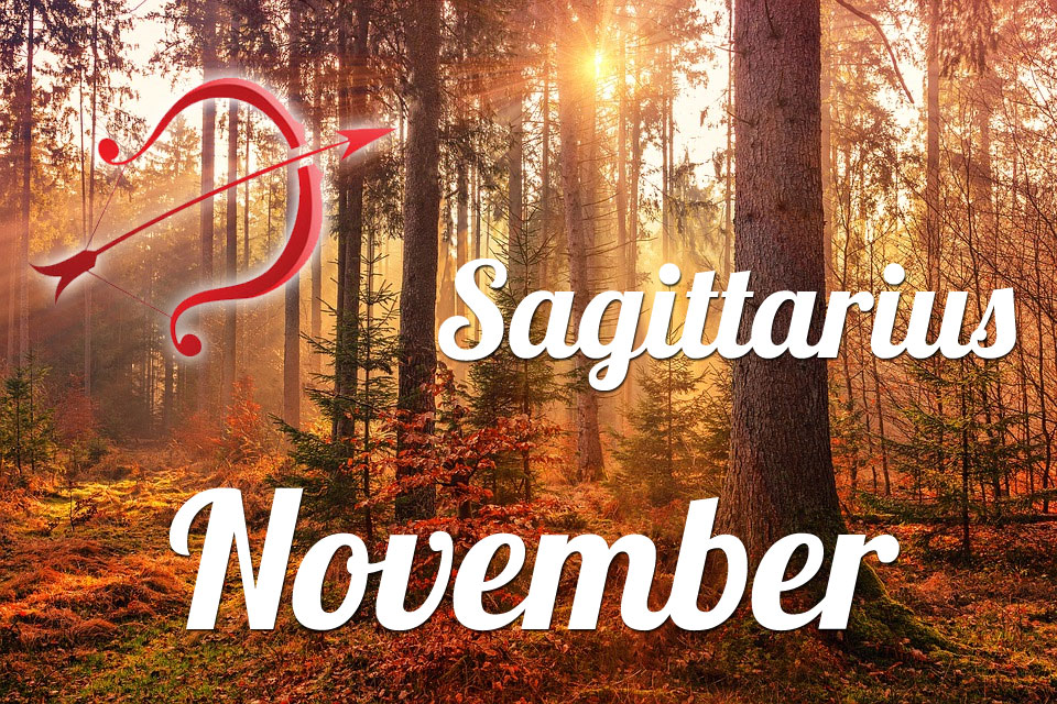 Sagittarius horoscope November