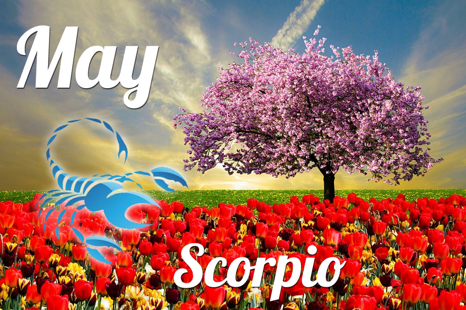 Scorpio horoscope May
