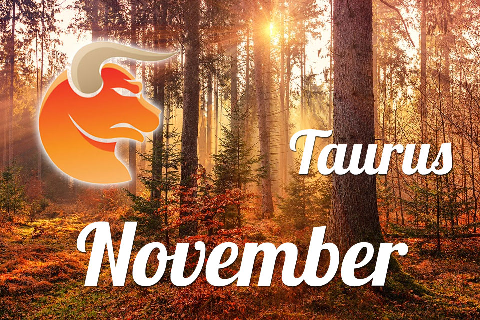 Taurus horoscope November
