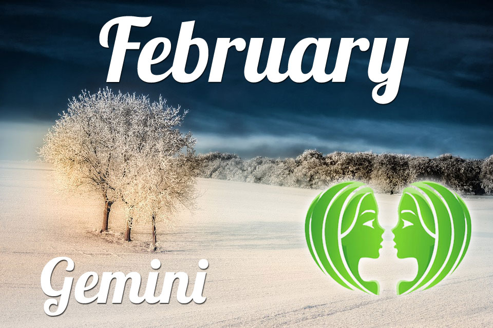 Gemini Horoscope for February: what to expect